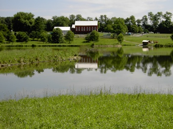 Red Barn by the pond